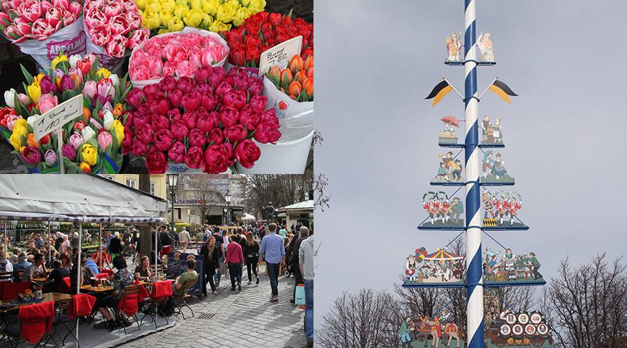insiderdads-innenstadt-muenchen-viktualienmarkt-maibaum-blumen
