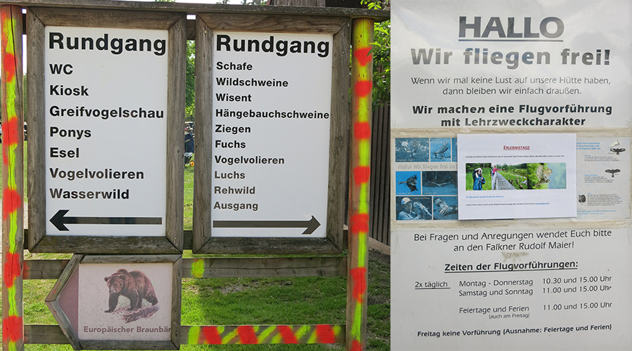 ideas4parents-ausflug-wildparkpoing-natur-infos