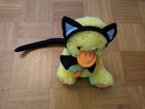 Kindergeburtstag: Ente als Katze verkleidet